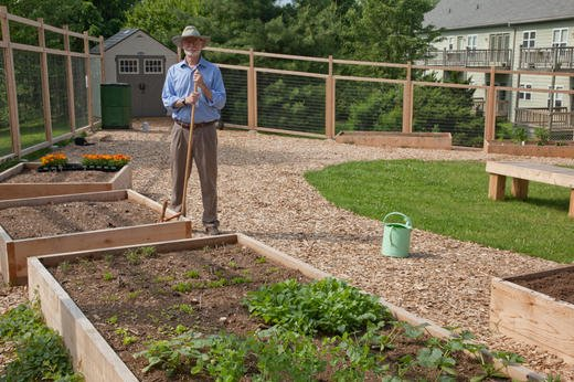 New to gardening? You can start small with a half-bed of 4 feet x 5 feet.