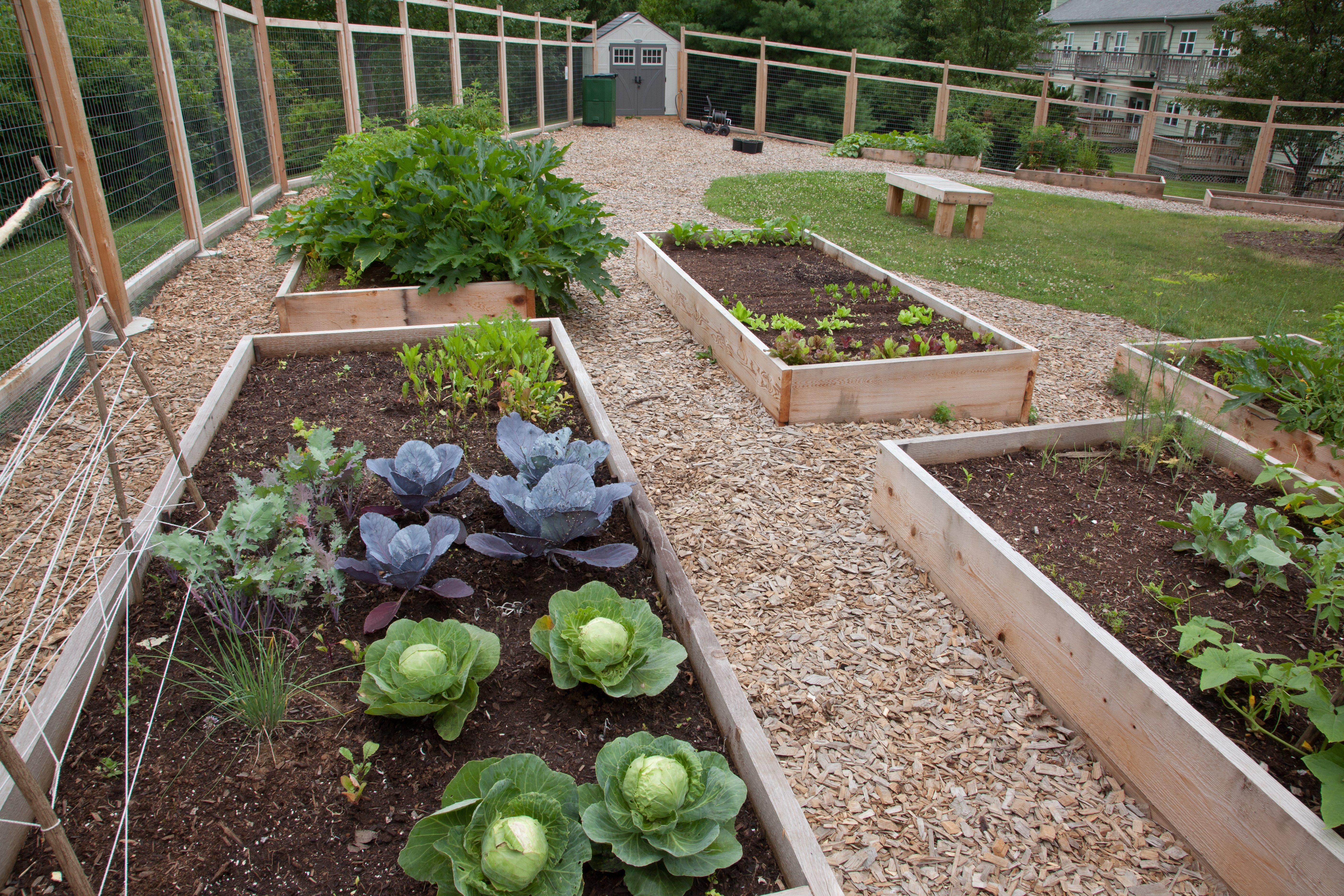 Abodes Organic Community Garden